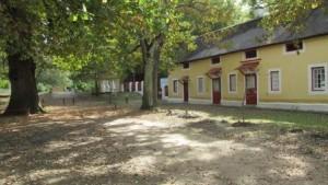 Open area 1