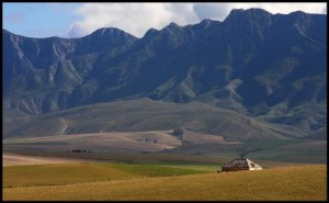 Riviersonderend Mts 2 - Pete Mack Solitude