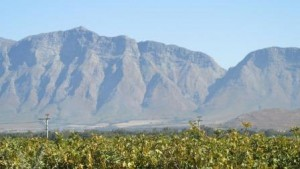 Tulbagh mts 2 low res